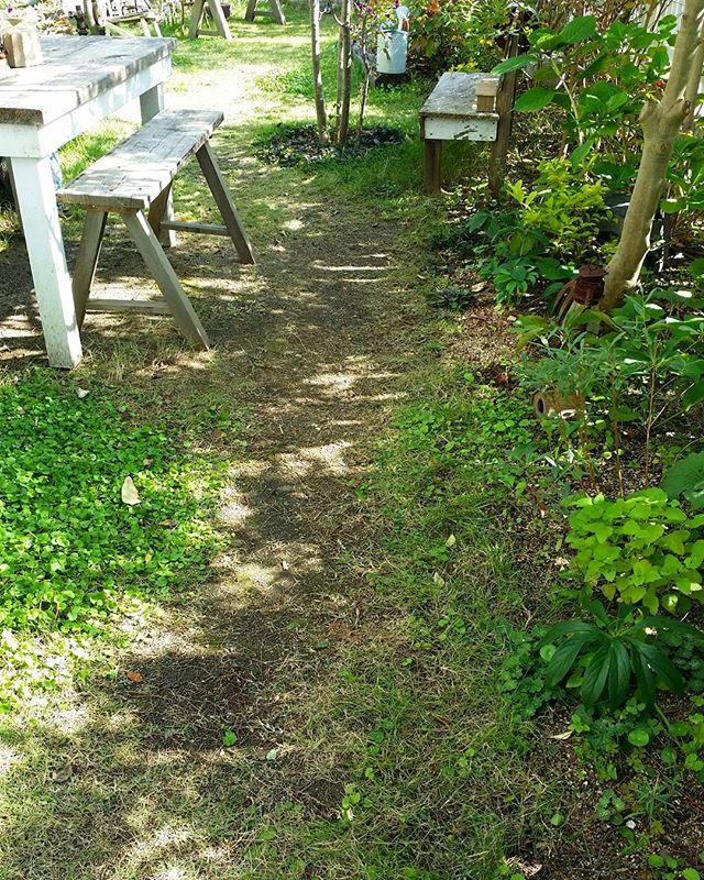自然と溶け込むテーブルでお庭レイアウト