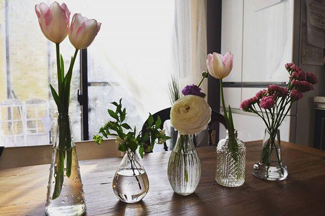 様々な花瓶で部屋の飾り付け