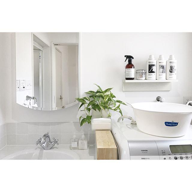 ワントーン×観葉植物の洗面所