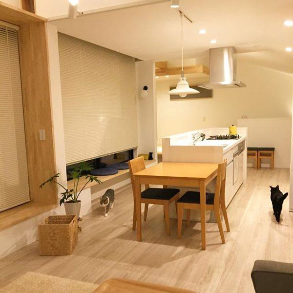 キッチンの照明と間接照明の両方に配置した例