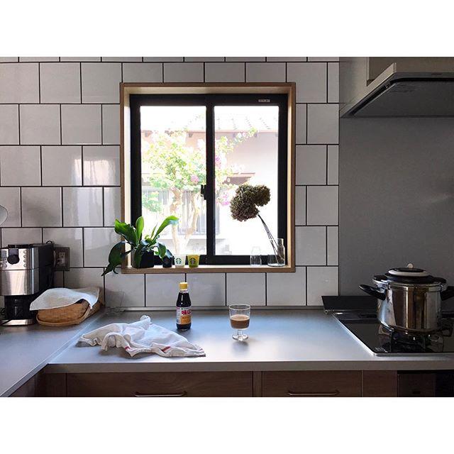 L型キッチンのコーナーに観葉植物