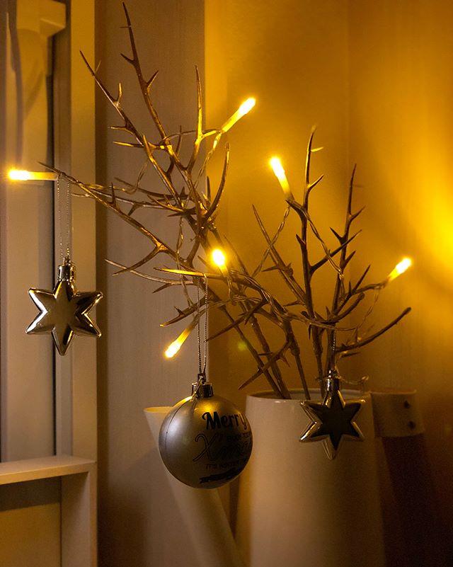 LEDケーブルライトでおしゃれに飾り付け