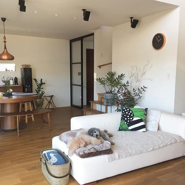 白でシンプルなソファでかっこいい部屋