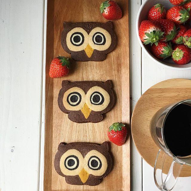 可愛いフクロウクッキー