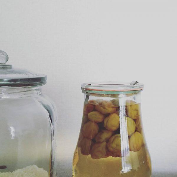 WECKのおすすめ活用法♪梅酒の保存