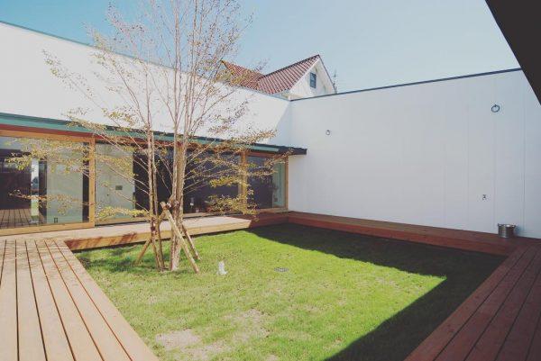 部屋から臨める平屋住宅の庭