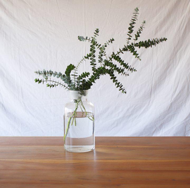 「水の量」は、花の種類によって変える