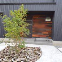 人気の庭木おすすめ16選!目隠し用〜育てやすい小さめサイズまで幅広くご紹介