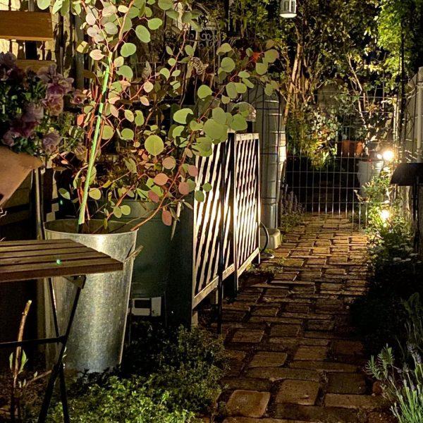狭い庭 ガーデニング ライトアップ4