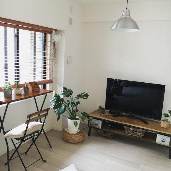 風水的に好相性な観葉植物とテレビの配置