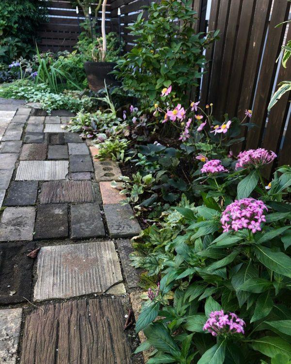狭い庭 ガーデニング フェンス・アプローチ3