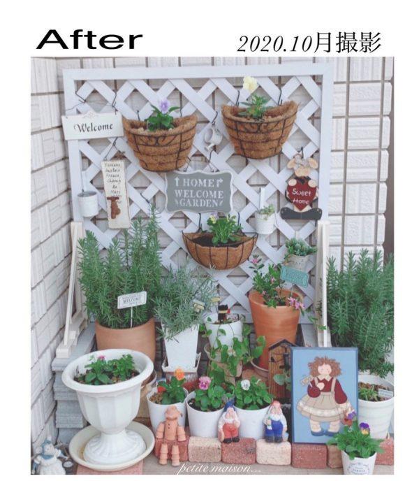 東向き 玄関 風水 植物