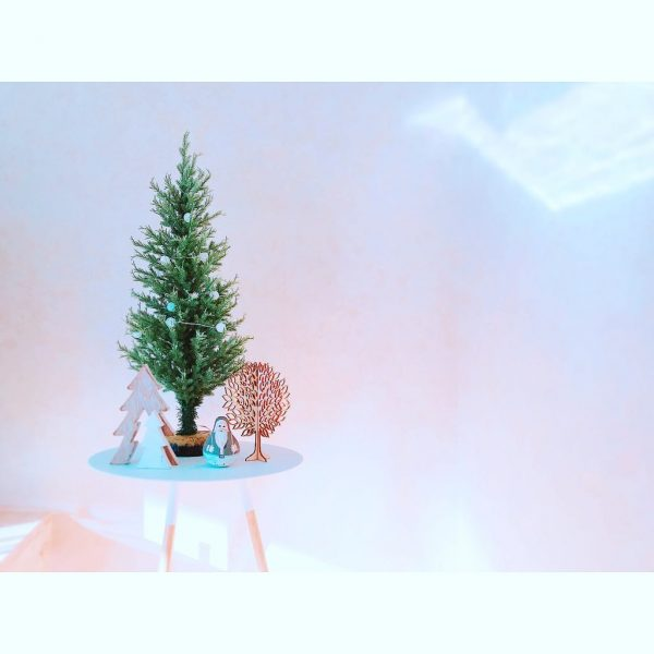 クリスマスディスプレイ16