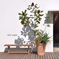 狭い庭のガーデニングアイデア!空間を有効活用しておしゃれにするポイントは?