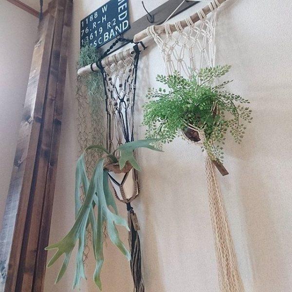 狭いお部屋にも◎観葉植物の引っ掛け収納