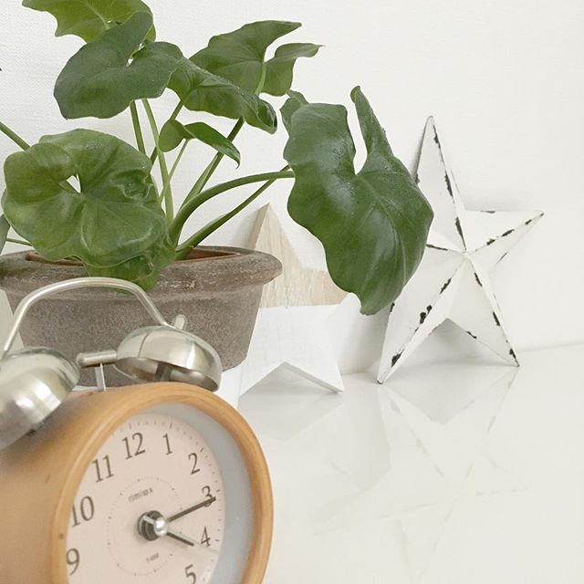 風水に良い時計の飾り方 ワンルーム2