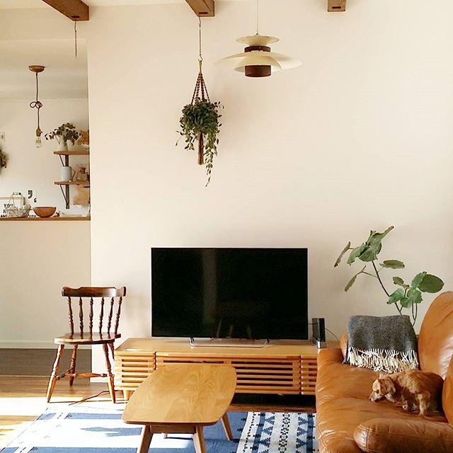 北欧家具が光るテレビとソファの配置