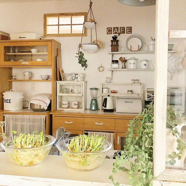 2つの食器棚で見せるレイアウト