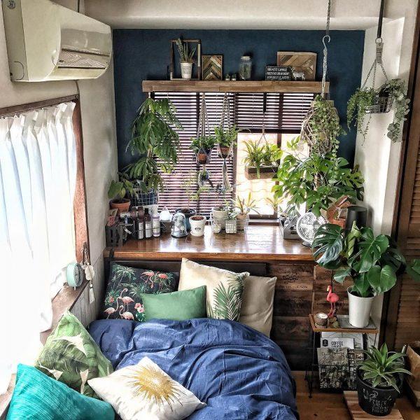 気力を回復するモンステラのある風水的寝室