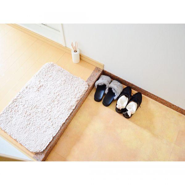 一人暮らし 玄関 シンプル2