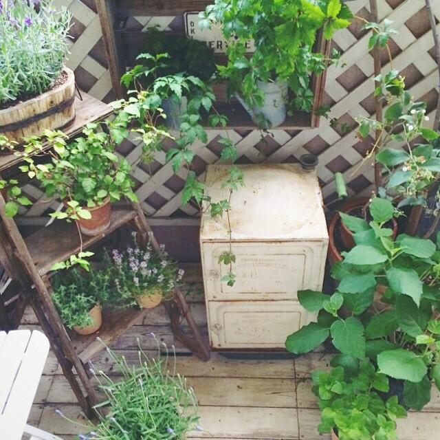 ウッドフェンスと鉢植えで作る庭