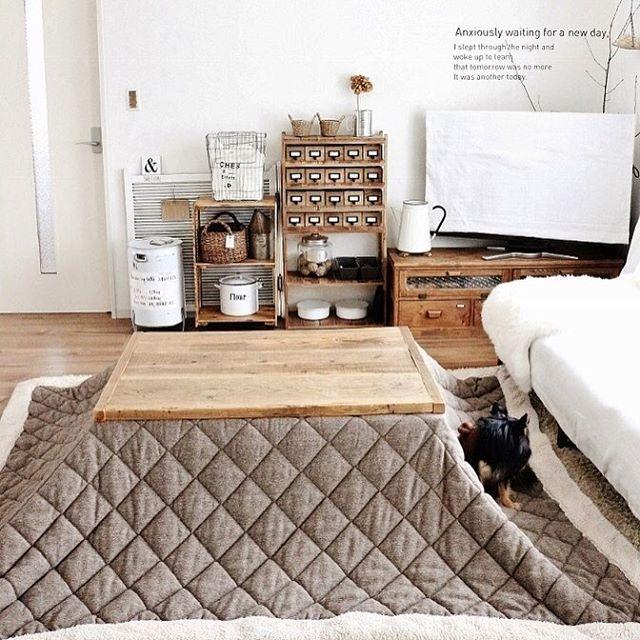 犬と暮らす部屋のレイアウト16