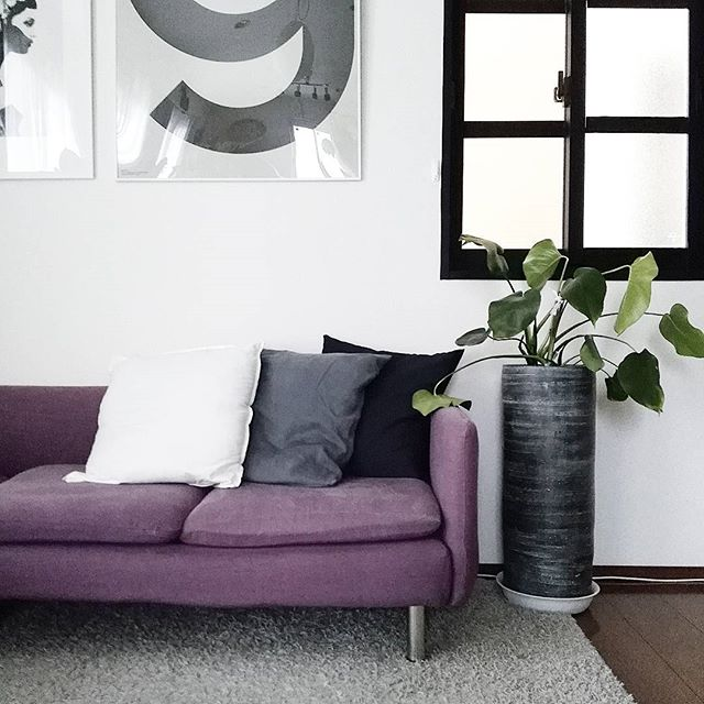 紫のソファでシックなインテリア