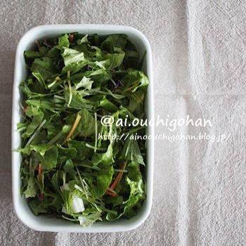 作り置きしておくと便利!簡単グリーンサラダ