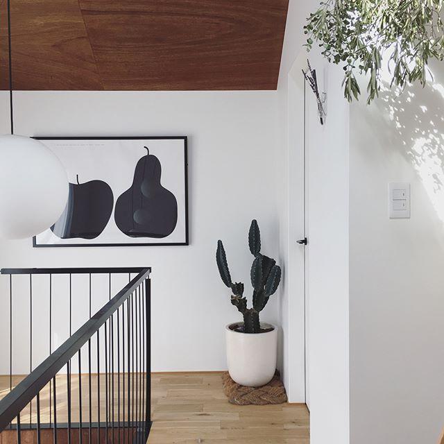 サボテン インテリア 階段 飾り方