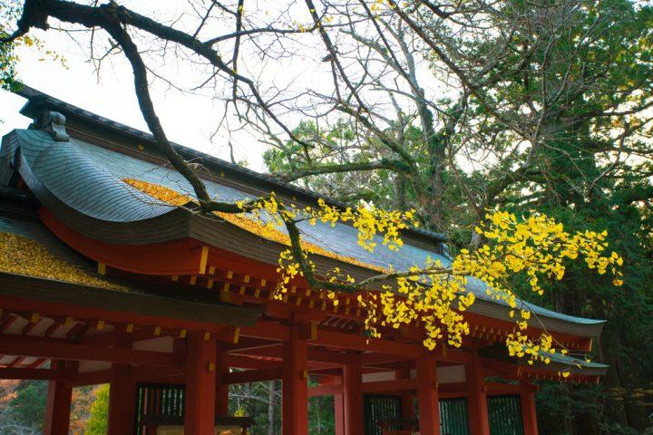 子宝のご利益のある人気の神社⑧香取神宮