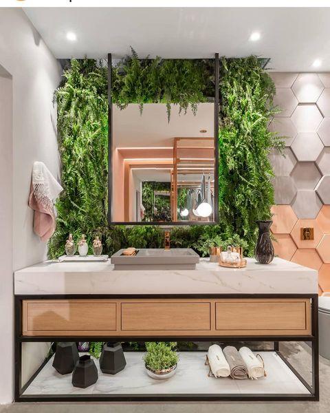 洗面所植物