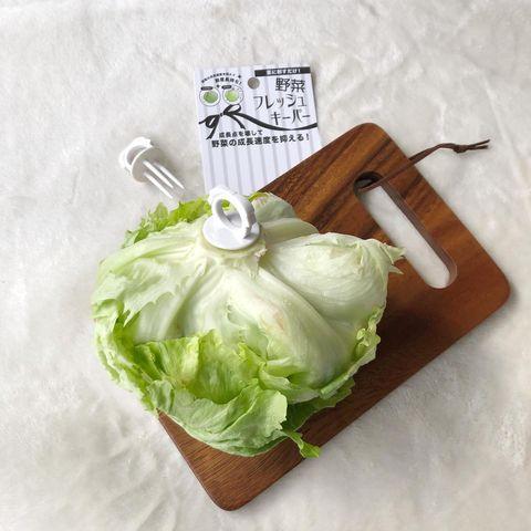 野菜保存①
