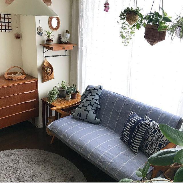 北欧インテリアにおすすめの観葉植物12