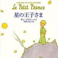 大人の女性におすすめなフランス文学。ロマン溢れる初心者向けの作品〜人気の作品まで