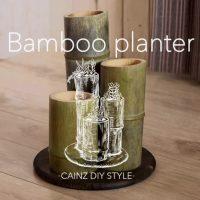 天然の竹筒で作るプランターDIY