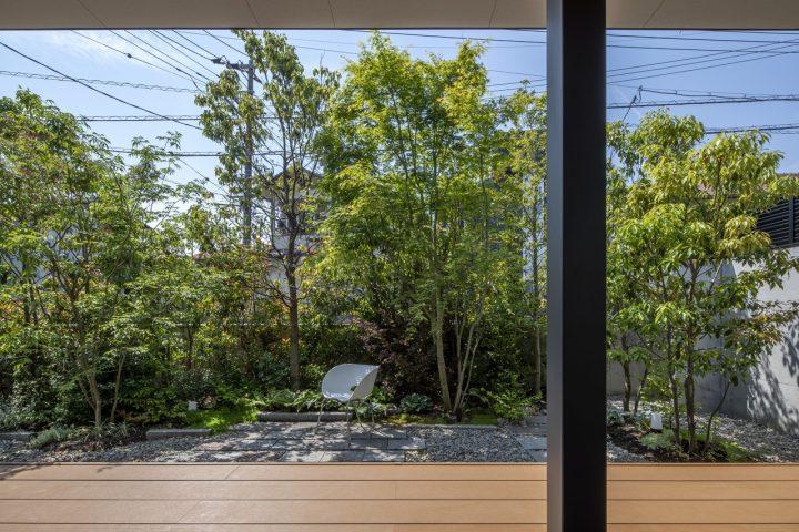 背が高い木々が並ぶ和風の庭