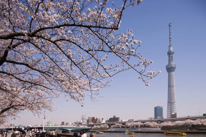 東京らしい景色を堪能できる穴場スポット
