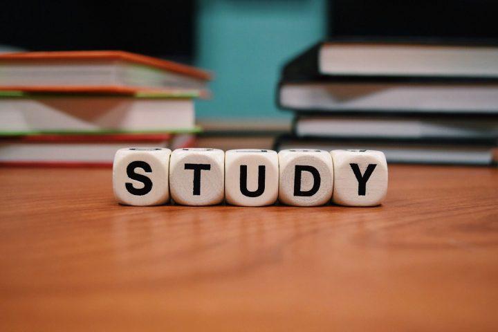 大人女性におすすめの勉強のジャンル