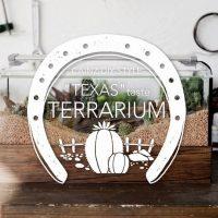 水槽で作るテキサス風テラリウムDIY