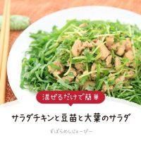 【レシピ動画】混ぜるだけで簡単「サラダチキンと豆苗と大葉のサラダ」