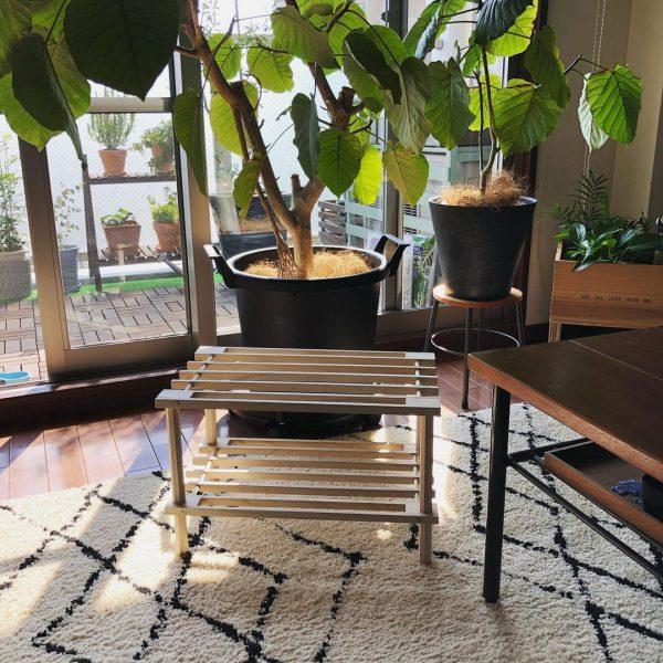 (1)木製マルチラック
