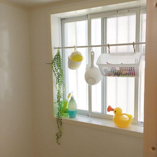 お風呂に不向きの観葉植物をフェイクで吊るす
