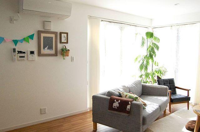 南リビングに布地のソファを配置