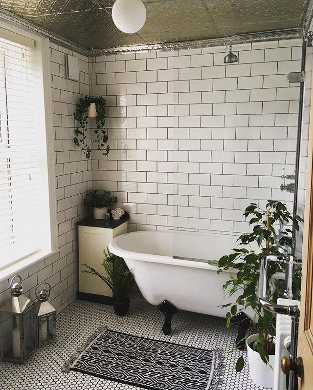 お風呂の観葉植物をモノクロで揃えて吊るす