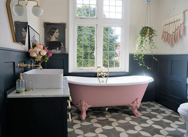 お風呂の観葉植物を天井から吊るす