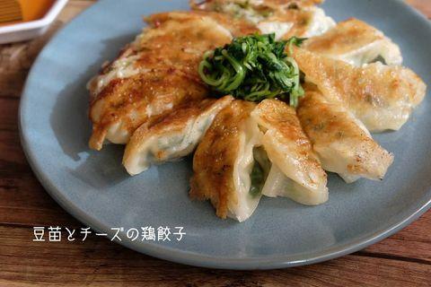 財布に優しい♡豆苗とチーズの鶏餃子レシピ