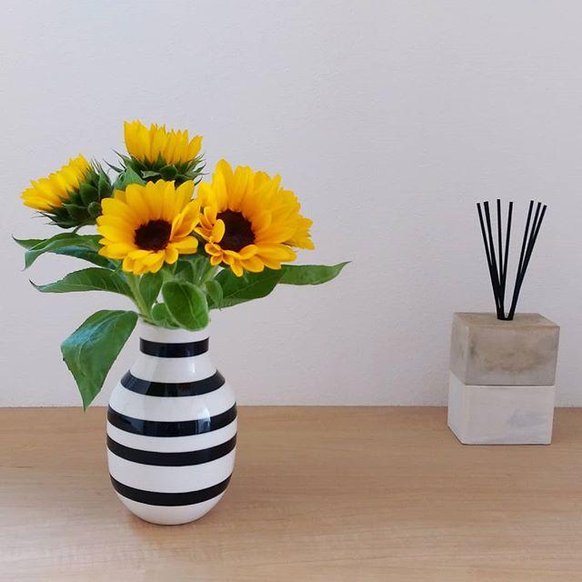 夏の花の美しい和名「向日葵」