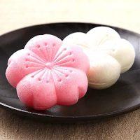 お土産にも最適な最中のおすすめ14選。和菓子好きさんが喜ぶ本当に美味しい逸品って?