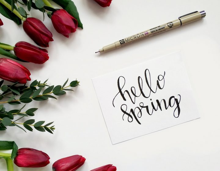 おすすめの春の俳句《有名》