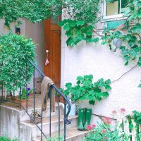 おしゃれな花壇で華やかなお出迎え。玄関におすすめのデザインアイデアをご紹介